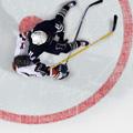 Webdesign und Umsetzung der Hockeyseite