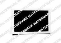Plugin product watermark